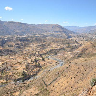 Terrasses incas dans la vallée de Colca