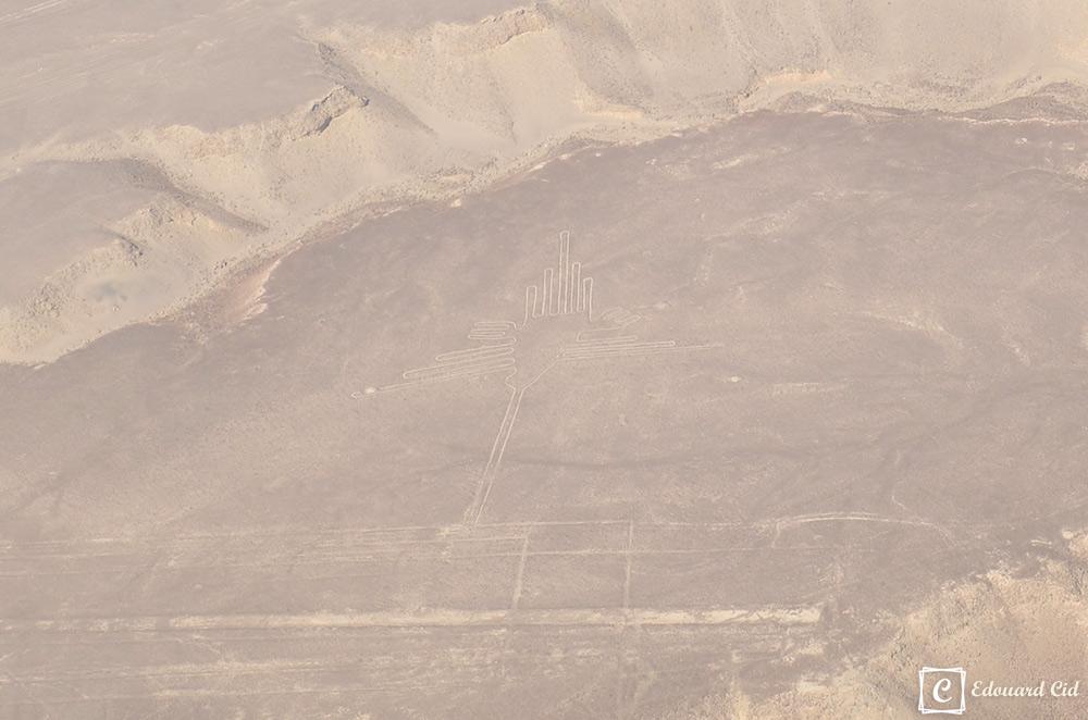 Géoglyphe du Colibri