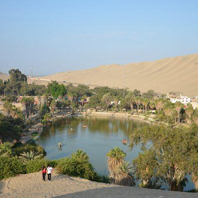 Belle vue de l'oasis