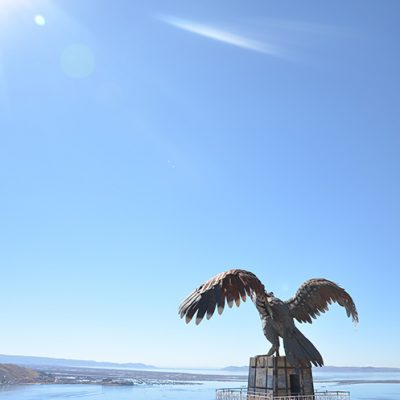 Statue du condor à Puno