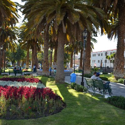 Jardin d'Arequipa