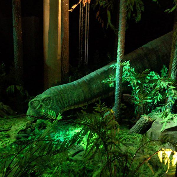 Reconstitution - Diplodocus mangeant au petit matin