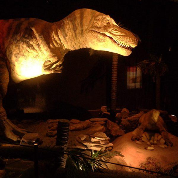Reconstitution - Tyrannosaurus rex défendant son nid