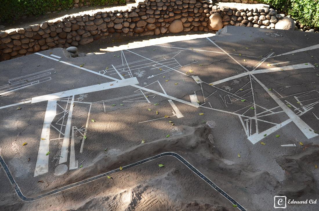 Les lignes Nazca au musée Antonini
