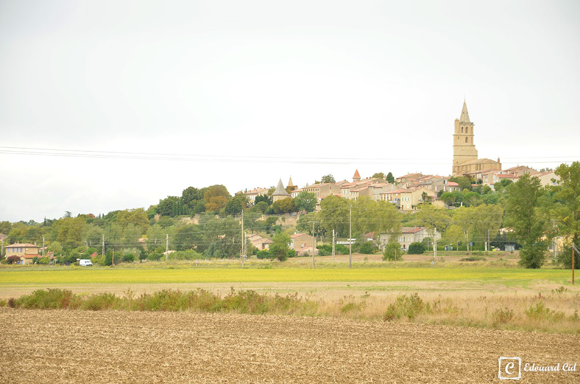 Avignonet-lauragais - Le clocher