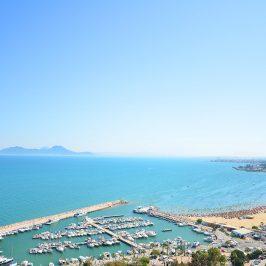 Le port de Sidi Bou Saïd